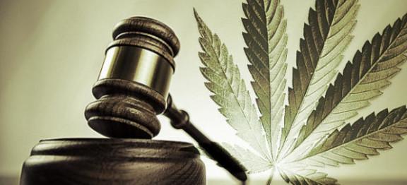 Medical marijuana Downriver Michigan